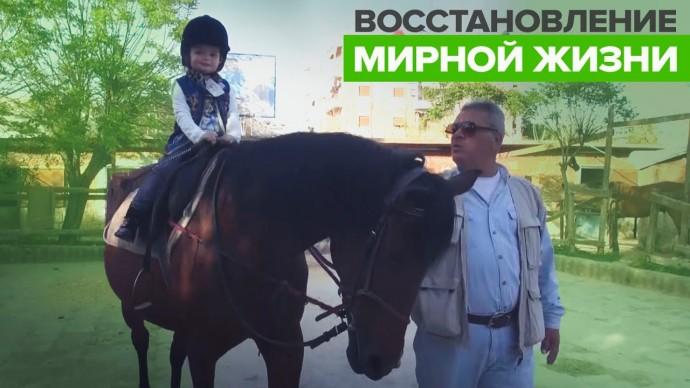 Восстановление работы конного клуба в Алеппо — видео