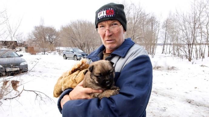 Собачья жизнь в России