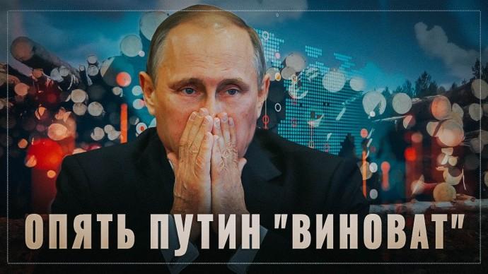 """Путин опять """"плохой"""". Теперь нам начинают рассказали почему запрет экспорта леса это плохо"""