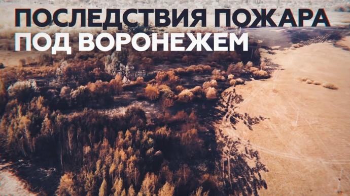 Беспилотник заснял последствия крупного пожара под Воронежем