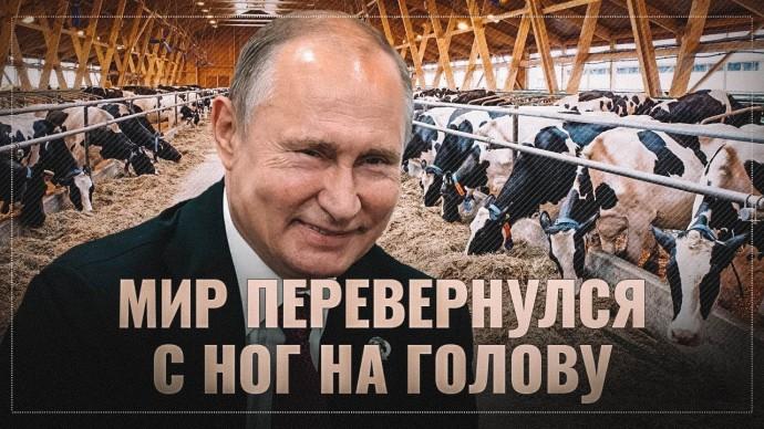 Мир перевернулся с ног на голову: Россия начала поставки говядины в Бразилию
