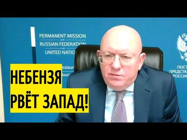 Небензя в Совбезе ООН объяснил Германии, кто оккупировал Украину!