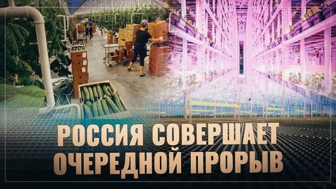 Тепличный бум: Россия совершает очередной прорыв