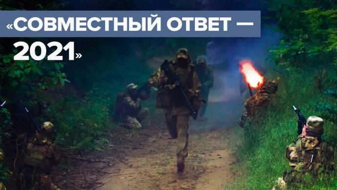 В Сербии проходят совместные российско-сербские тактические учения — видео