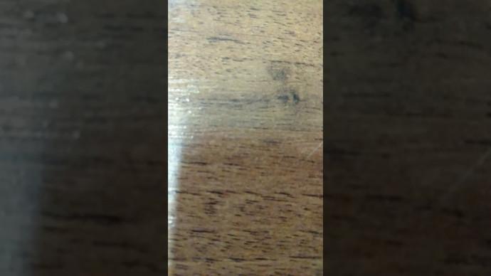 Видео 2 секунды