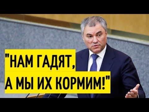 Прибалтика в ШОКЕ! В Госдуме призвали НЕ КОРМИТЬ враждебные страны!