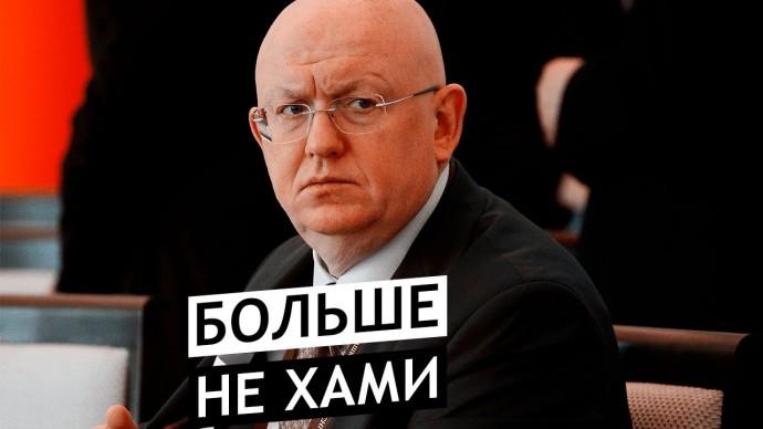 Заявление Василия Небензи ввело в ступор американского дипломата в Совбезе ООН