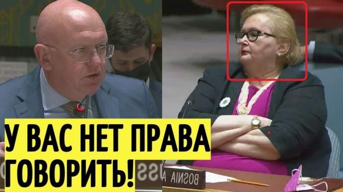 Срочно! Небензя РАЗМАЗАЛ посла Боснии и Герцеговины в Совбезе ООН!