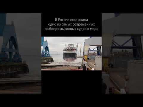 Cупертраулер. В России построили одно из самых современных рыбопромысловых судов в мире #Shorts