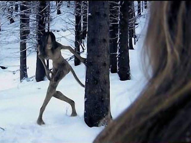 #триллер Страшный фильм ужасов