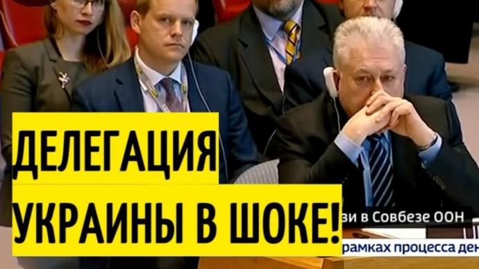 Заявление Небензи по Донбассу ОШАРАШИЛО Совбез ООН!