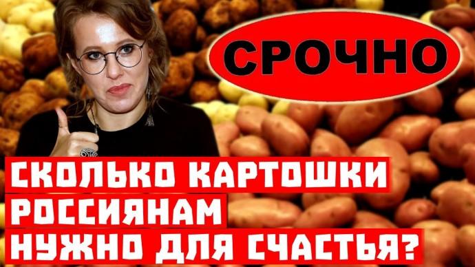 Срочно, Хабаровск оставили без картошки свободы! Россия перестала кушать говядину на 3,4%!