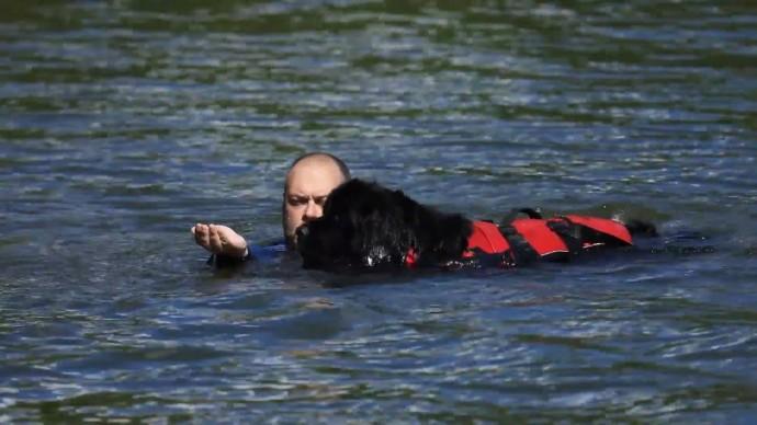 Тренировка собак-водолазов в акватории Стравинского затона