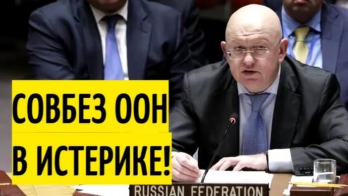 Заявление Небензи ШОКИРОВАЛО Украину и её западных соучастников!