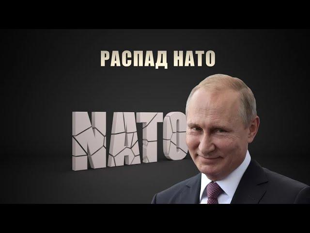 """НАТО угрожает распад. На это указывают учения """"Запад-2021"""" и создание Союзного государства"""