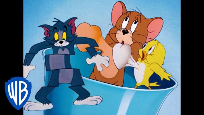 Tom & Jerry em Português | Brasil | Lá Vem os Pássaros | WB Kids