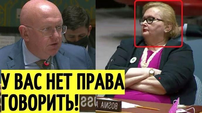 Запад в ШОКЕ! Небензя УНИЧТОЖИЛ посла Боснии в Совбезе ООН!