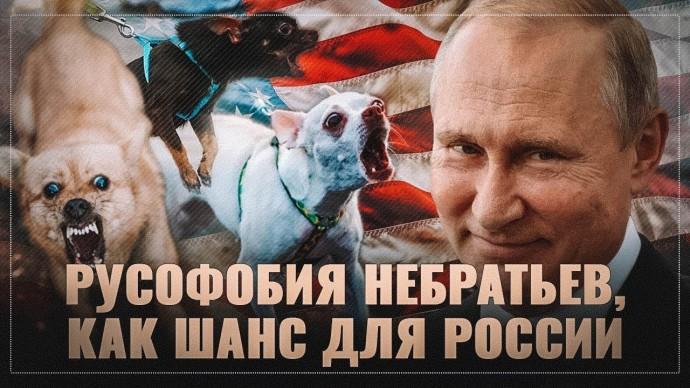 Русофобия прибалтийских, украинских и других небратьев, как шанс для России