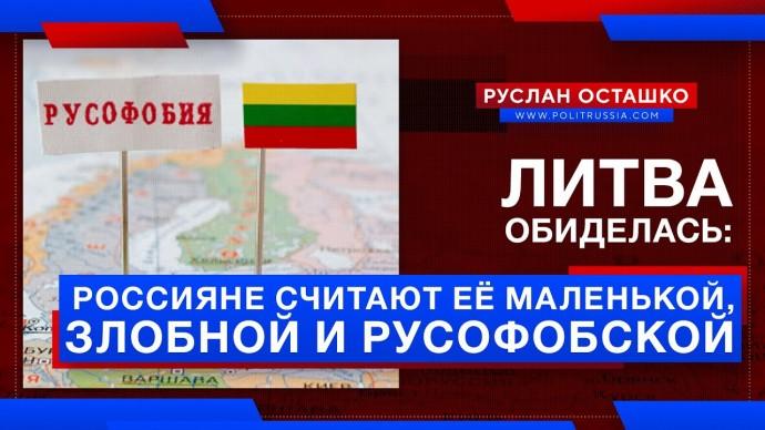 Литва обиделась: Россияне считают её маленькой, злобной и русофобской (Руслан Осташко)