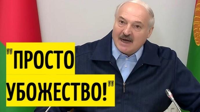 Полный БАРДАК! Лукашенко РАЗНОСИТ спортсменов Беларуси!
