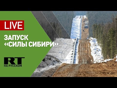 Путин и Си Цзиньпин в режиме телемоста запускают газопровод «Сила Сибири»