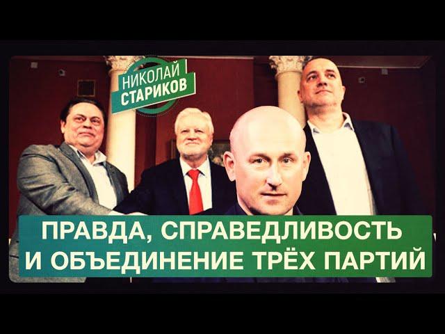Правда, справедливость и объединение трёх партий (Николай Стариков)