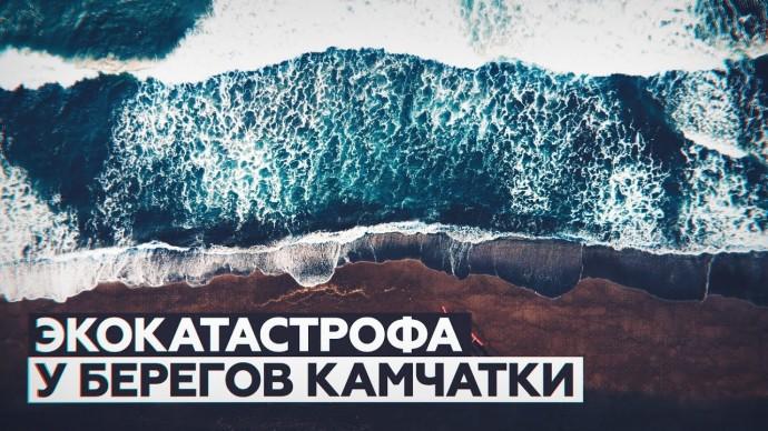 Нефтепродукты в Тихом океане: что известно о загрязнении воды у побережья Камчатки