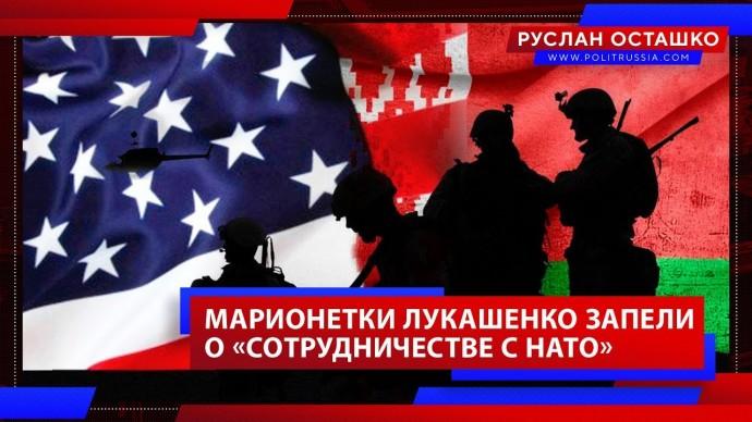Марионетки Лукашенко запели о «сотрудничестве с НАТО» (Руслан Осташко)
