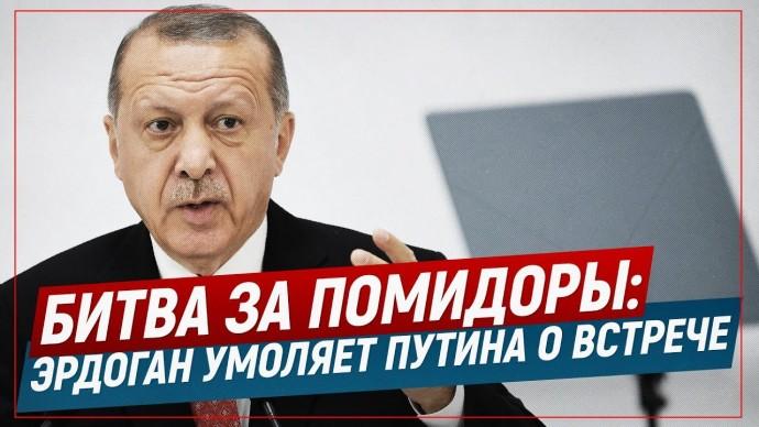 Битва за помидоры: Эрдоган умоляет Путина о встрече (Telegram. Обзор)