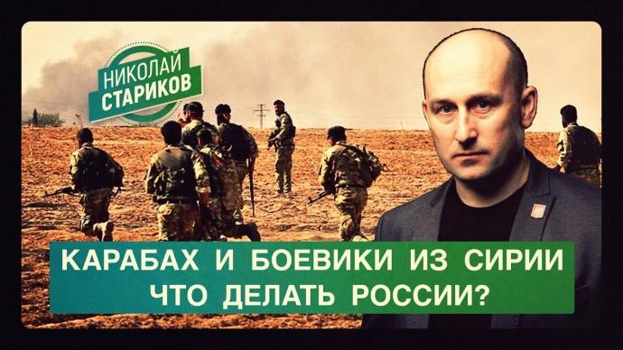 Карабах и боевики из Сирии. Что делать России? (Николай Стариков)