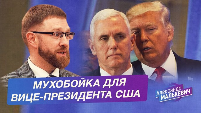 Мухобойка для вице-президента США (Александр Малькевич)