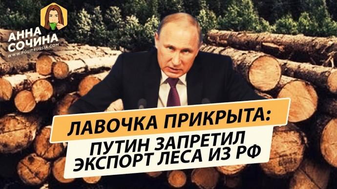 Не понимали по-хорошему: экспорт леса из России запрещают (Анна Сочина)