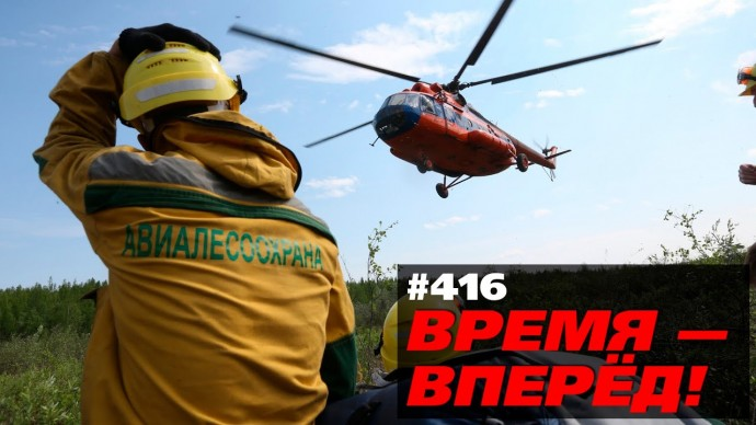 Началась операция по спасению русского леса. Разбираем суть
