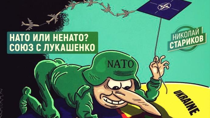 НАТО или НЕНАТО? Союз с Лукашенко (Николай Стариков)