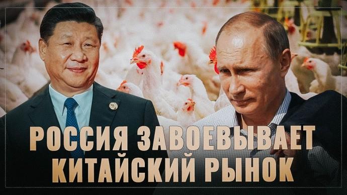 Россия совершила настоящий рывок. Китай нашел деликатес в российских курах