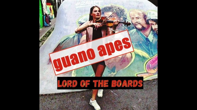 Guano Apes - lord of the boards / violin and piano cover