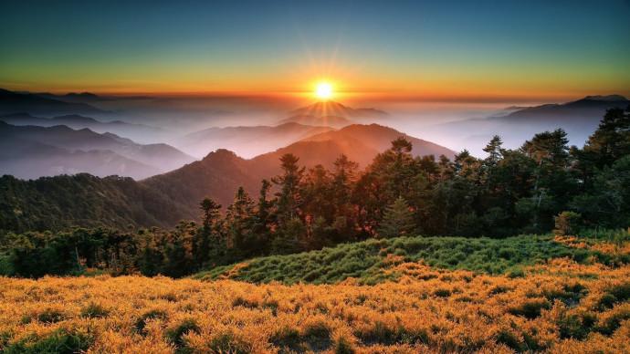 Дикая природа Тайваня: остров джунглей