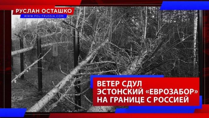 Ветер сдул эстонский «еврозабор» на границе с Россией (Руслан Осташко)