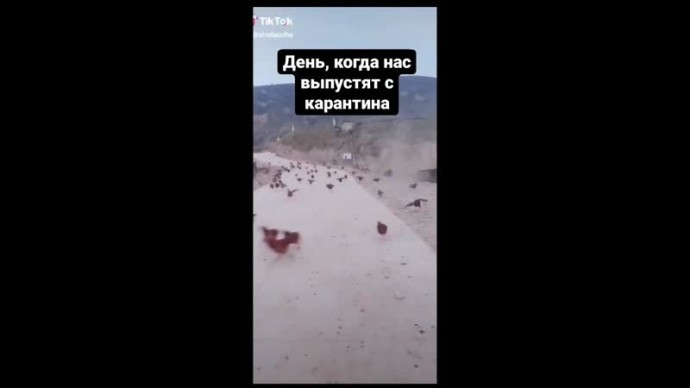 после карантина)